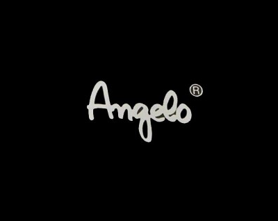 ANGELO Cases